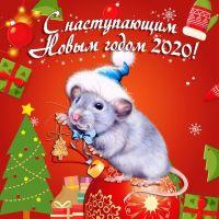 С наступающим Новым 2020 годом!!!